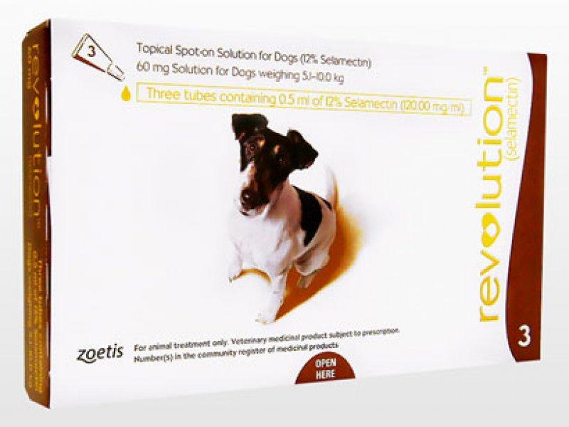 レボリューション小型犬用(5.1~10kg)の画像1