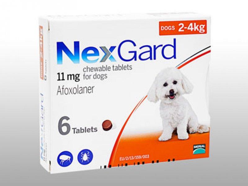ネクスガード11mg超小型犬・子犬用(2~4kg未満)の画像1
